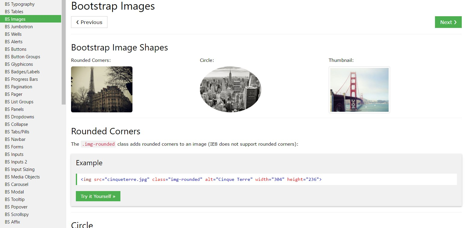 Bootstrap image  article